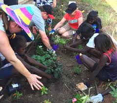 The Stephanie Alexander Kitchen Garden National Program Our People Medibank Community Fund