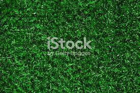 fake grass texture. Fake Grass Texture R