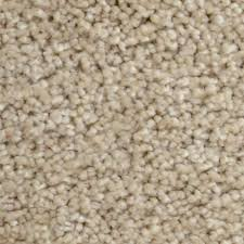 home decorators collection carpet sample stargazer color
