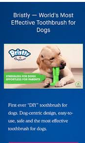 bristly toothbrush pet supplies for dogs health grooming on carou