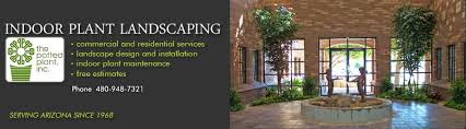 interior landscaping office. The Potted Plant, Indoor Plant Landscaping, Phoenix Arizona Interior Landscaping Office