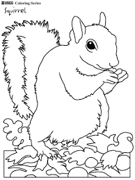 Red Squirrel Coloring Page 2019 Open Coloring Pages