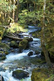 River Slicks sometimes called creek rock or river rocks are mined from  ancient river beds. Earthquakes over the years can change the course of a  river ...