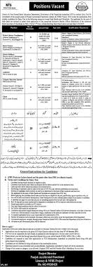 literacy non formal basic education department jobs pk get job updates in your email directly