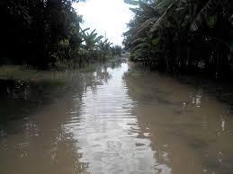 Banjir Rendam 41 Desa di Pati