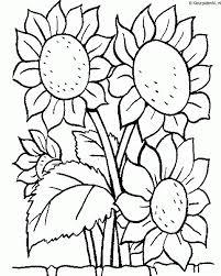 Bloemen Kleurplaat Kleurplaten 324 Kleurplaat Kleurennet