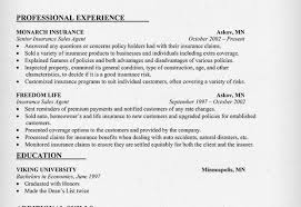 insurance agent resume sample professional experience insurance agent sample resume