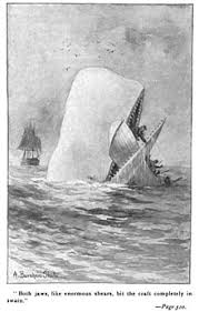 essays on moby dick in herman melville s moby dick research paper note taking powerpoint writing argumentative essays