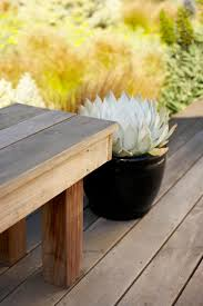 wood deck and bench with succulent in black ceramic pot
