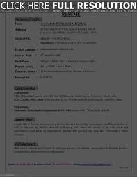Profile Section Of Resume Resume Template