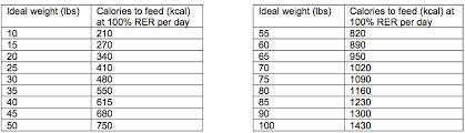 Dog Weight Loss Chart Wellness Wednesday Dog Weight Loss 101 Dailybarker