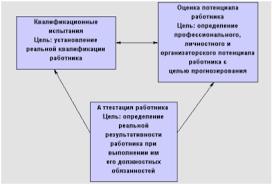 Автоматизация процесса управления персоналом на примере ООО  Рисунок 1 4 Уровни оценки персонала