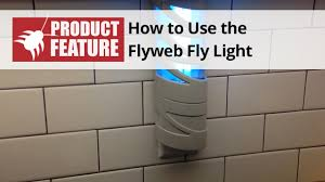 Luralite Pro Fly Light How To Use The Flyweb Fly Light Indoor Electric Bug Light Domyown Com