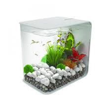small round fish aquarium 24 tank coffee table for awesome exciting o licious display