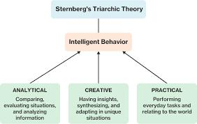 Sternberg Intelligence Defining And Categorizing Intelligence Course Hero