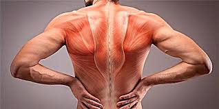 muscle pain causes and treatment