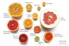 Cuesa Fruit Seasonality Chart Sunshine In The Winter A Farmers Market Guide To Citrus Cuesa