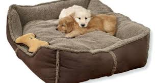 Full Image for Tweed Dog Bed Pets At Home Dog Cave Bed Pets At Home Wicked  ...