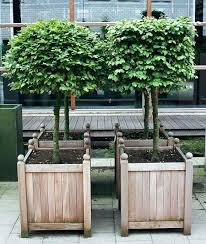 wooden box planters in wood planters worlds most beautiful garden planters by way of wooden box planters