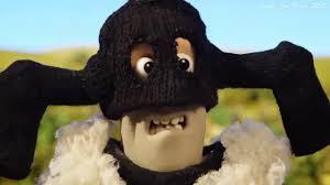 Shaun The Sheep 2019 #Những chú cừu thông minh (Part 6) - YouTube