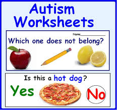 Wh Questions for Speech Therapy, Autism | Autism, Worksheets and ...