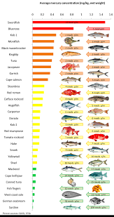 High Mercury Fish Chart 51 True Mercury In Fish Chart