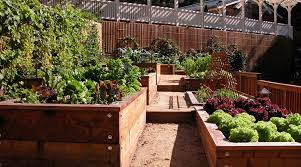 how to set up raised beds for gardening
