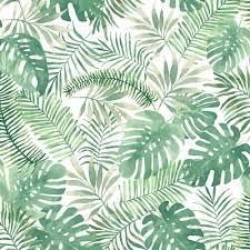 Leaf Wallpapers - Top Free Leaf ...