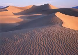 Bildergebnis für wüste