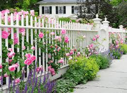 5 fence paint colors to refresh your