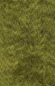olive green area rug dynamic rugs luxury olive green area rug incredible rugs and decor