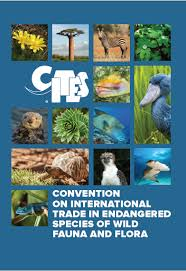 Wildlife Movement Chart What Is Cites Cites