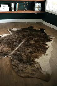 odd shaped rugs petspokane org pertaining to inspirations 8