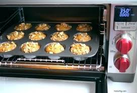 wolf countertop convection oven wolf oven review wolf gourmet oven x wolf gourmet convection oven reviews wolf countertop