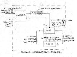Respiratory System Flow Chart Respiratory System Flow Chart Project