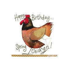 Image result for chicken birthday cards