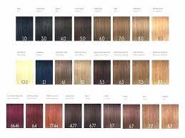 Dream Age Color Chart 47 Abundant Ion Color Brilliance Permanent Color Chart