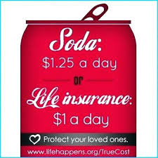 Statefarm Quote Mesmerizing Amazing State Farm Life Insurance Quote For State Farm Life