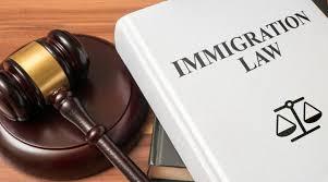 Why Hire a Visa & Immigration Consultant? | Visa & Migration
