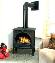 direct vent natural gas heater small vented stove napoleon fireplaces wall furnace canada