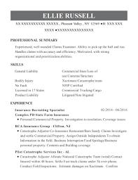 Best Insurance Recruiting Specialist Resumes | Resumehelp