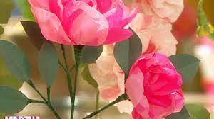 Martha Stewart Paper Flower Video Paper Peony And Poppy Flowers Martha Stewart