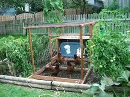 astounding small vegetable garden design pictures kitchen ideas white