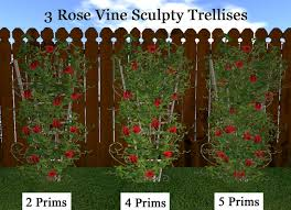 Trellises And Vine Supports You Can BuildClimbing Plant Trellis