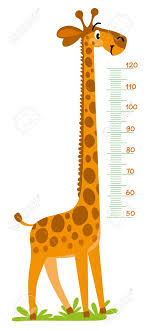 Height Chart Pictures Giraffe Meter Wall Or Height Chart