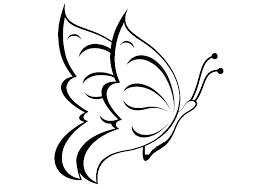 Disegno Da Colorare Farfalla Cat 20668 Images
