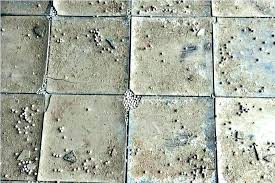 how to identify asbestos tile how to identify asbestos tile how to identify asbestos floor tiles
