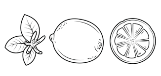 Small Picture Lemon leaves whole lemon and its cross section coloring page