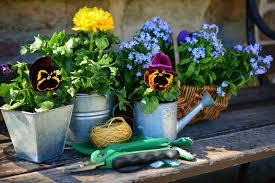 5 expert tips for your spring gardening
