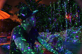 HOW TO Green Your Christmas TreeChristmas Lights In Backyard